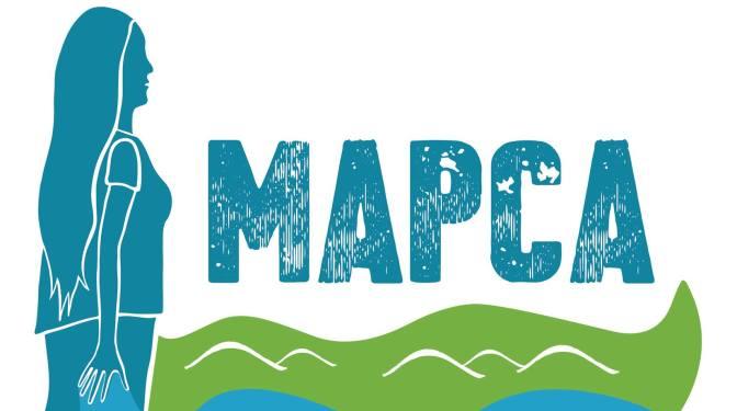 DECLARACION FUNDACIONAL  MOVIMIENTO MESOAMERICANO ALTERNATIVAS POPULARES  AL CAPITALISMO (MAPCA)